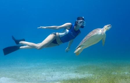 Snorkeling-Aegean-Sea-8