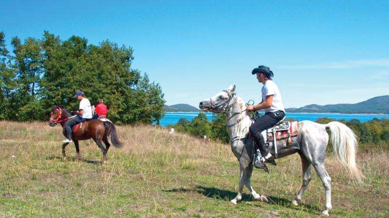horse-riding-4x4